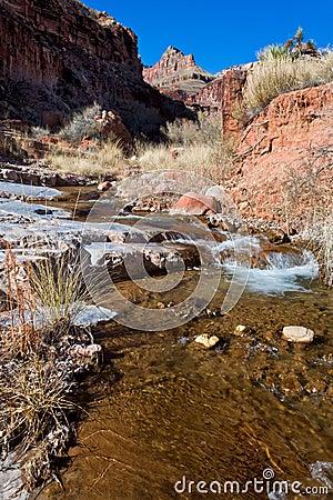 Free AZ-Grand Canyon-North Rim-Clear Creek Canyon Stock Photography - 20344362