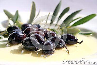 Azeitonas e petróleo verde-oliva