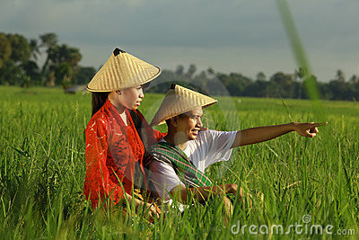 Aziatische landbouwer bij padieveld