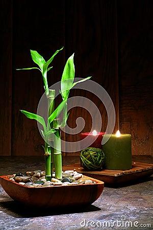 Azjatykciego bambusa inspirowany relaksu sceny zen