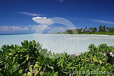 Azure lagoon.