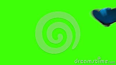 Błękitny motyli latanie na zielonym tle ilustracji