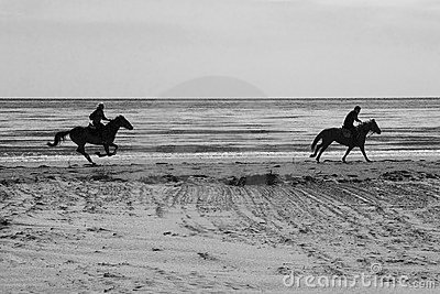 B/W Horses on the beach