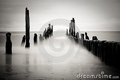 B&w sea image