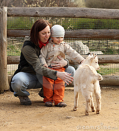 Free Baby And Goat Stock Photography - 21777482