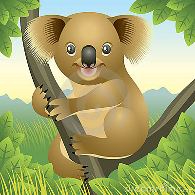 Free Baby Animal Collection: Koala Royalty Free Stock Photography - 8305537