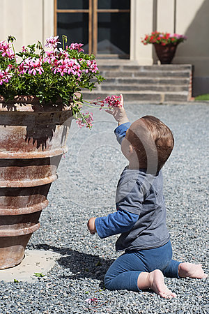 Free Baby At Patio Garden Royalty Free Stock Photography - 25943637