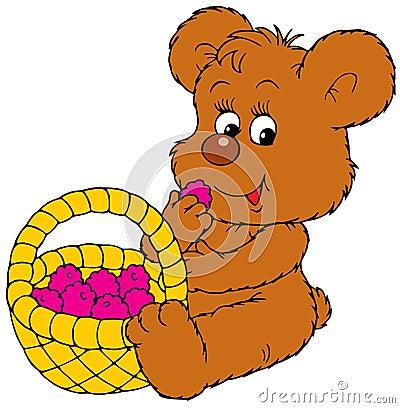 Baby bear eating berries