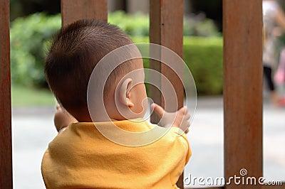 Baby behind gate