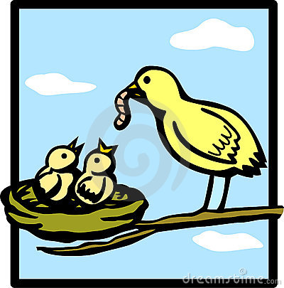 baby birds feeded by mother vector illustration