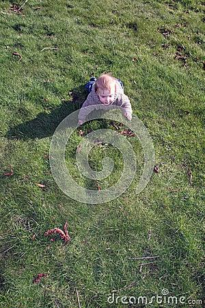 Baby boy crawling on grass