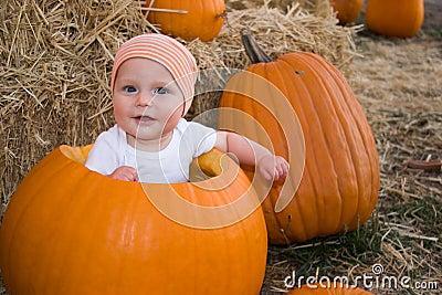 Baby boy sat in pumpkin