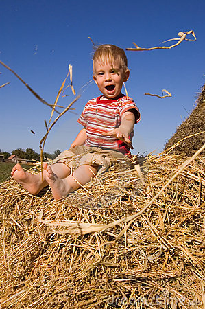 Free Baby Boy Sit On A Hayrick Stock Photo - 3883630
