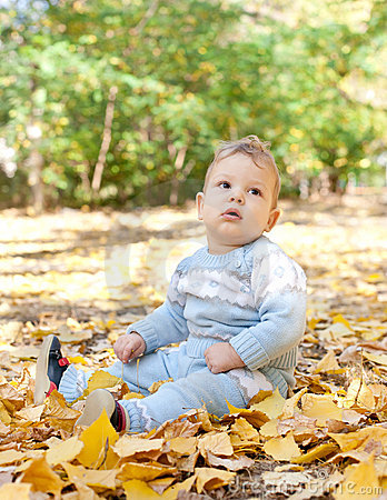 Baby boy sitting in autumn leaves