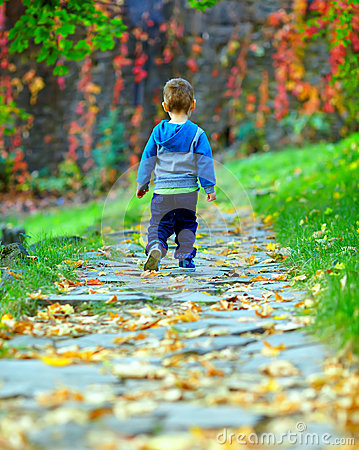 Baby boy walking away the autumn path