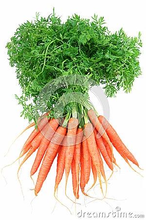 Free Baby Carrots Stock Photo - 2648290