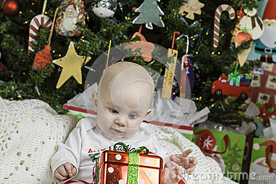 Baby Christmas Portrait
