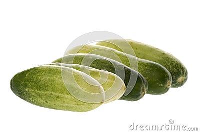 Baby Cucumbers Macro
