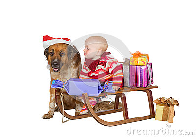 Baby and dog on Christmas sled