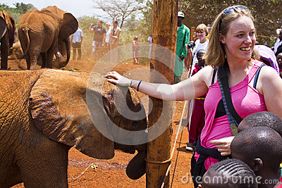 Baby Elephant Orphanage Editorial Image