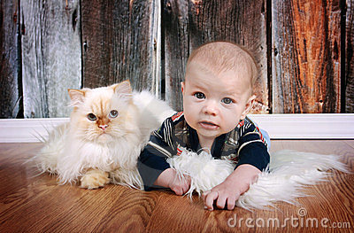 Baby en Kat