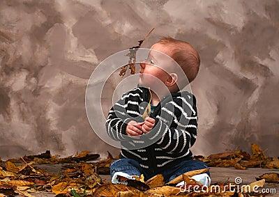 Baby fall autumn