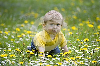 Baby on a flowery meadow