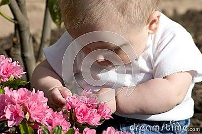 Baby Gardener