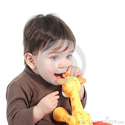 Baby girl biting an animal toy