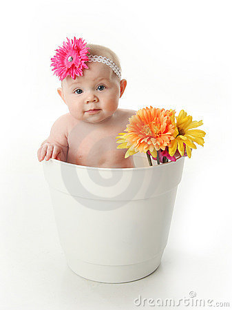 Baby girl in a flower pot