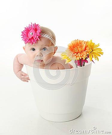 Baby girl in a flower pot