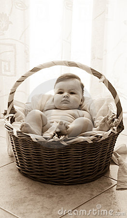 Baby girl in moses basket