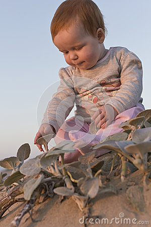 Baby girl sitting on the beach touching plants