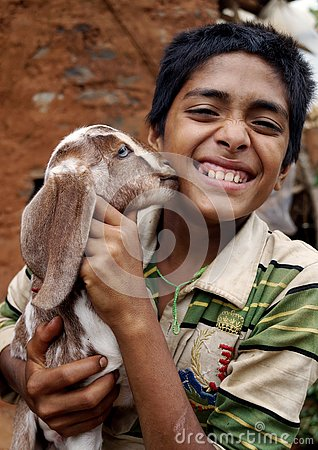 Free Baby Goat Kissing A Boy Stock Images - 134345974