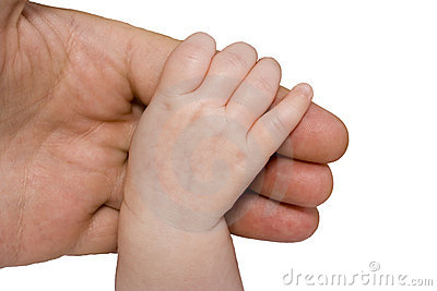 Baby hand and parent arm