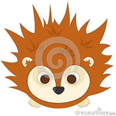Baby Hedgehog Stock Photography Image 18923882