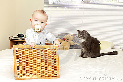 Baby at home with cat
