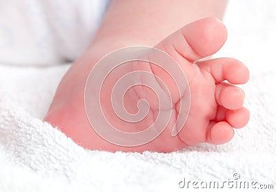 Baby legs. Infant