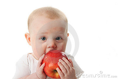 Baby licking a red apple