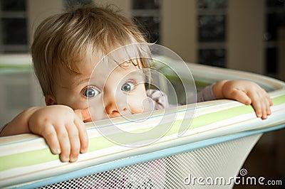 Baby looking over playpen