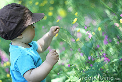 A baby in a meadow
