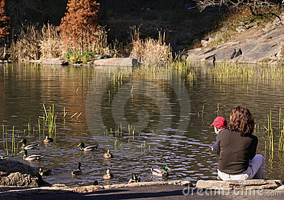 Baby and mother looking at ducks