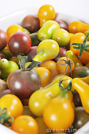 Free Baby Organic Heirloom Tomatoes Upclose Stock Images - 15225924