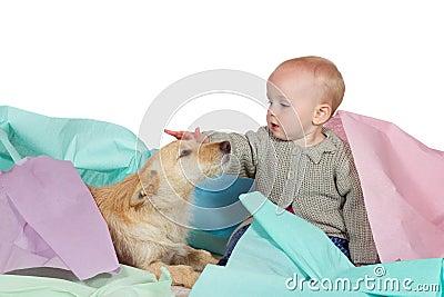 Baby Patting The Family Dog Royalty Free Stock Image - Image: 26752776