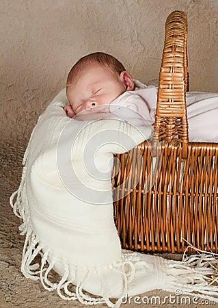 Baby in picnic basket