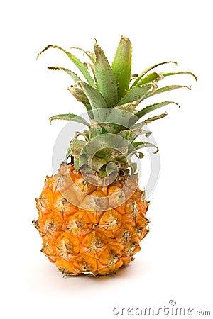 Free Baby Pineapple Stock Image - 12388321