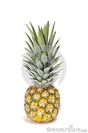 Free Baby Pineapple Royalty Free Stock Photo - 18706845