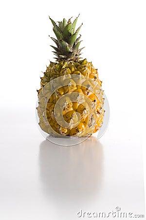 Free Baby Pineapple Royalty Free Stock Photos - 4079128