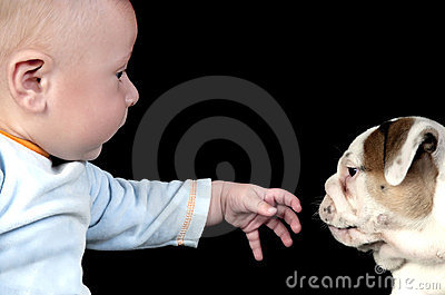 Baby playing with his dog