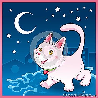 Baby cat in the night